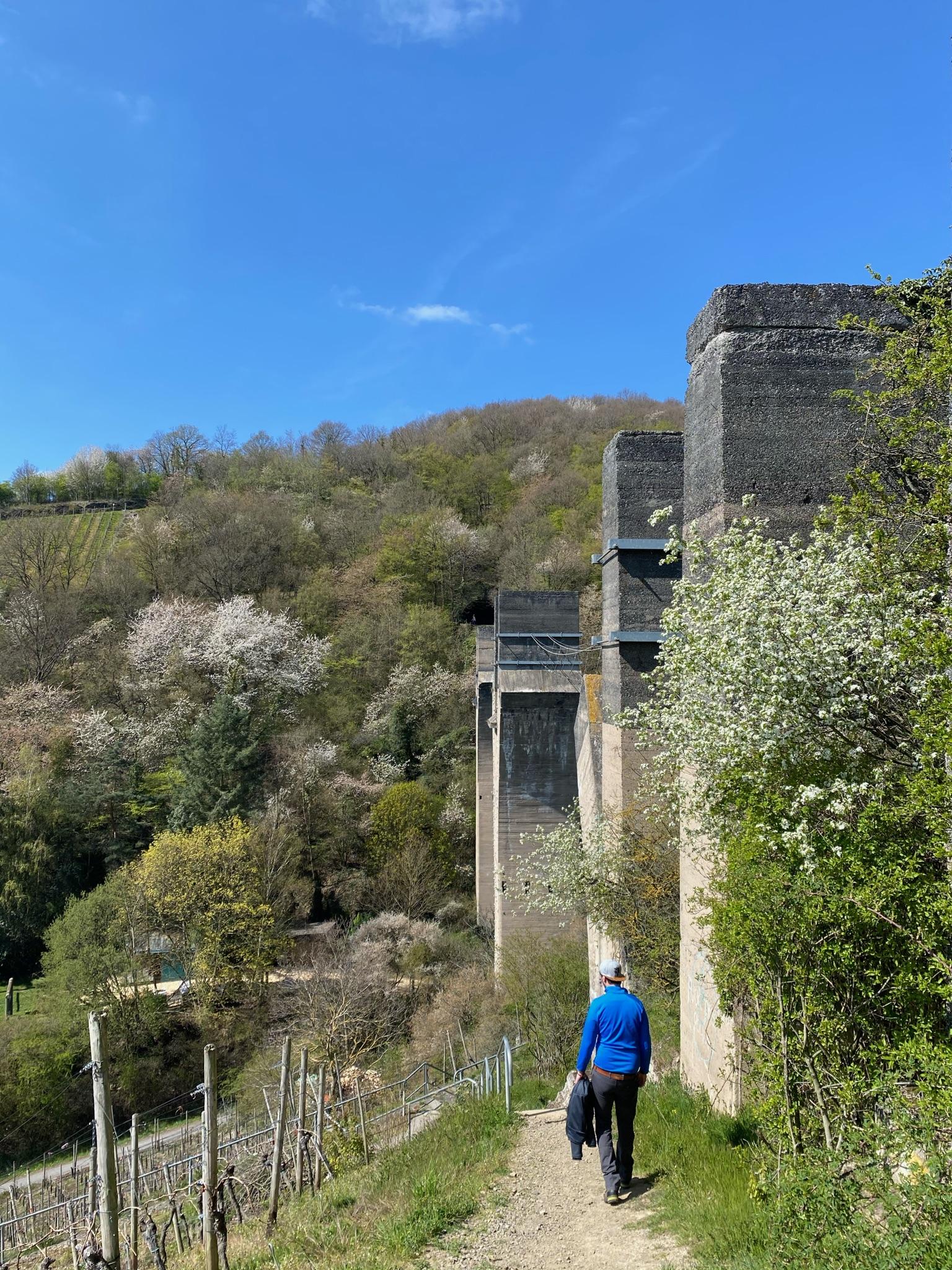 Malte betrachtet das Adenbachviadukt in Ahrweiler