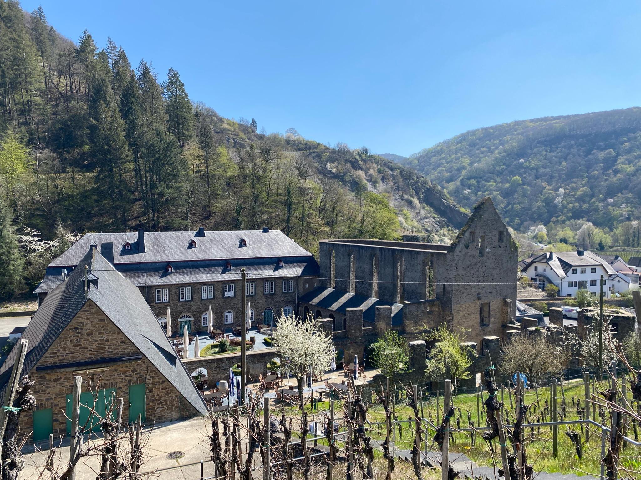 Blick auf das Kloster Marienthal