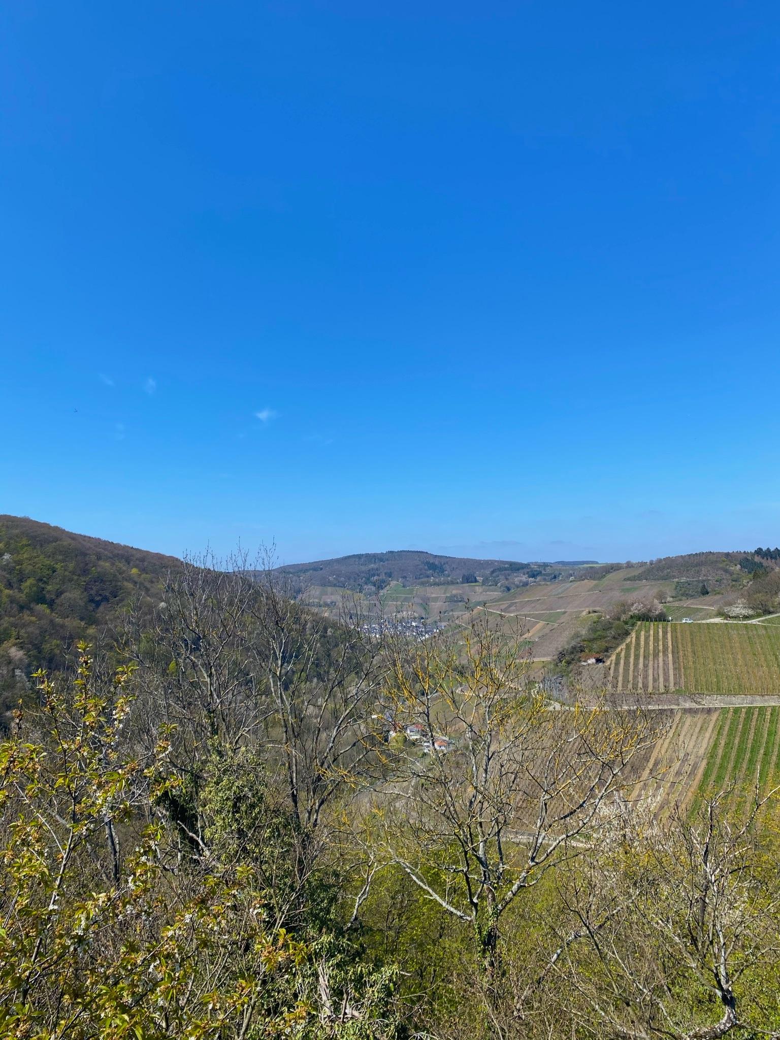 Blick vom Aussichtspunkt Bunte Kuh, Ahrtal