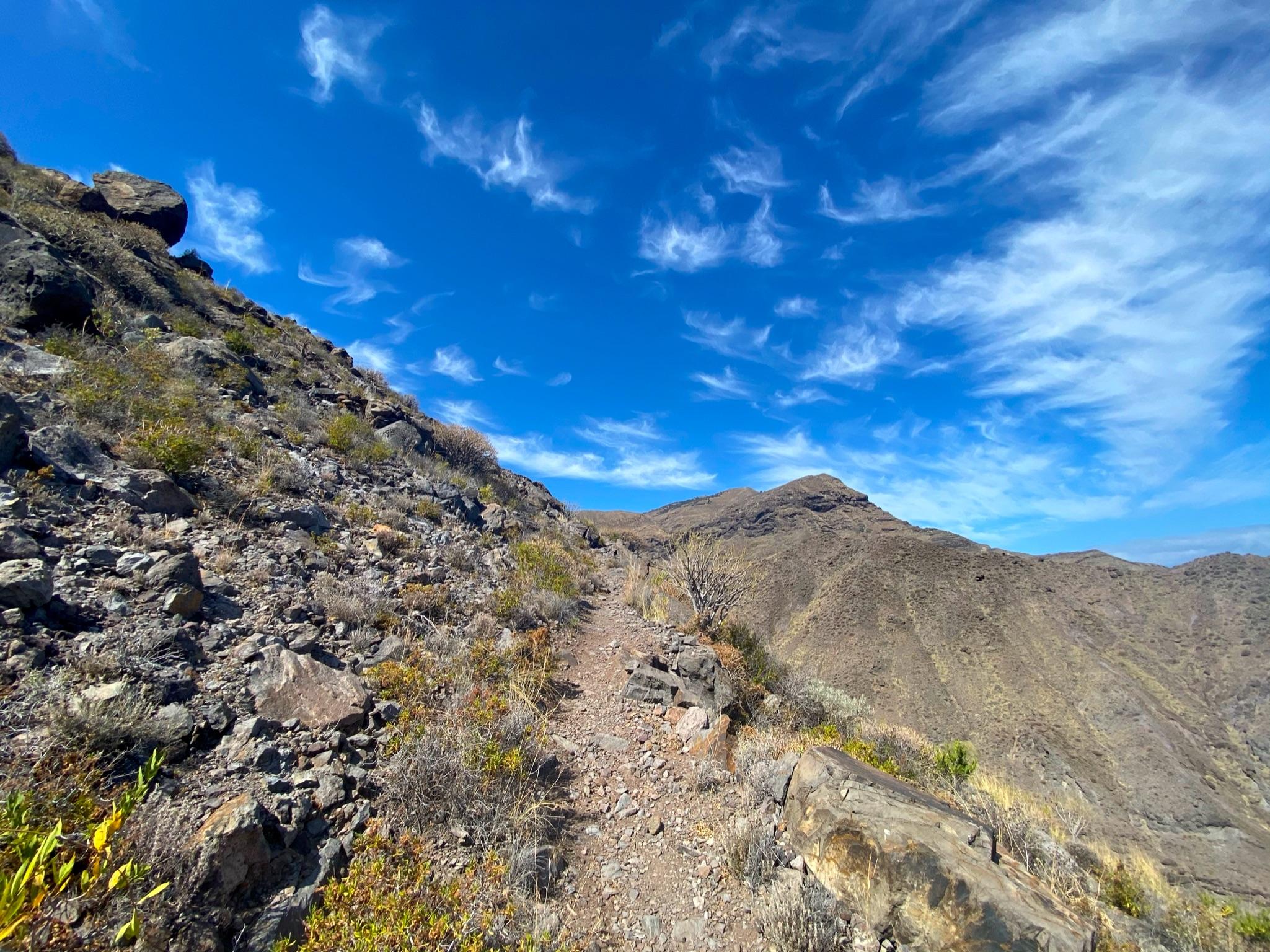 Wanderweg von El Risco zur Alm Firma