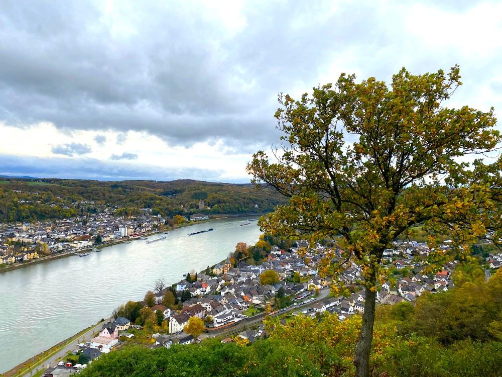 Blick auf den Rhein auf der dritten Etappe des Rheinsteigs
